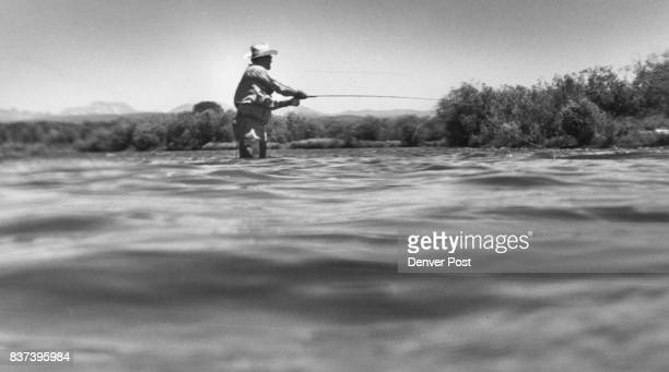 Wading The Fast Water Of The Colorado River In Search Of Rainbow Trout Midday efforts sometimes go for naught on Middle Park stretch of river but...