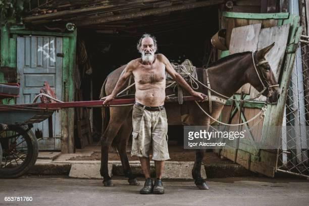 Wagon horse worker, Brazil