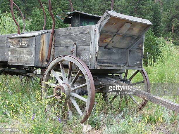 Wagon revisited