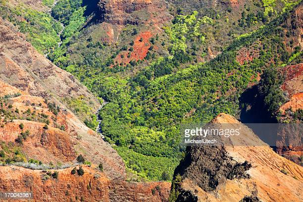 Waimea Canyon Sidearm, Kauai