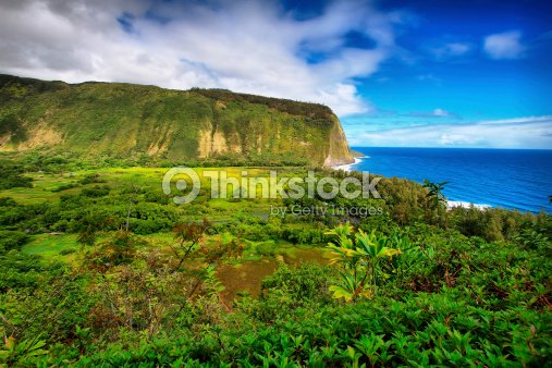 Waipio Valley view in Hawaii : Stock Photo