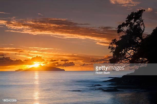 Waipu Cove sunrise behind Taranga Island
