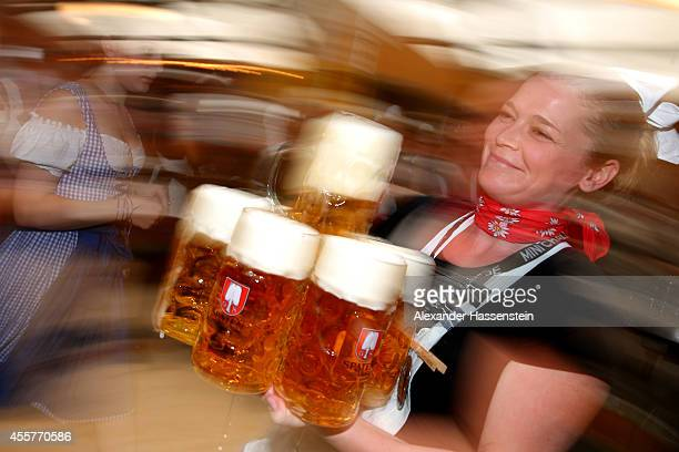 A waitress carries beer mugs at Schottenhamel beer tent at the opening day of the 2014 Oktoberfest at Theresienwiese on September 20 2014 in Munich...