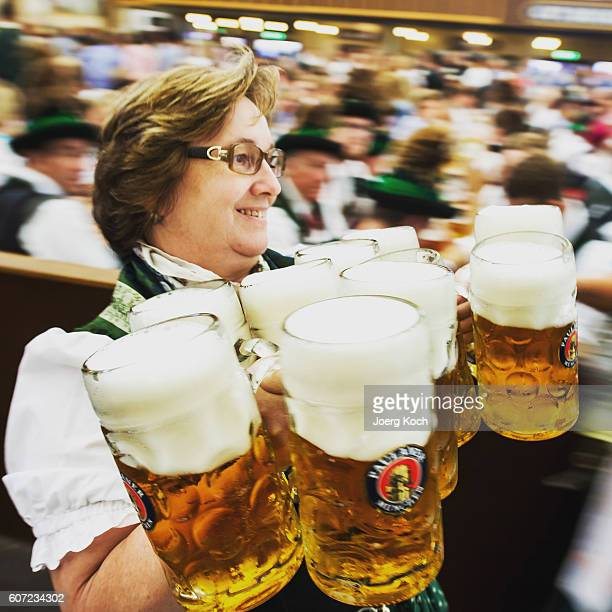 A waitress carries onelitre glasses of beer during the kick off of the 2016 Oktoberfest beer festival in the Paulaner tent at Theresienwiese on...