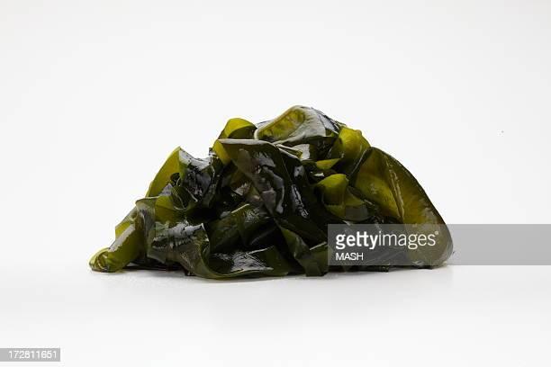 wakame,seaweed