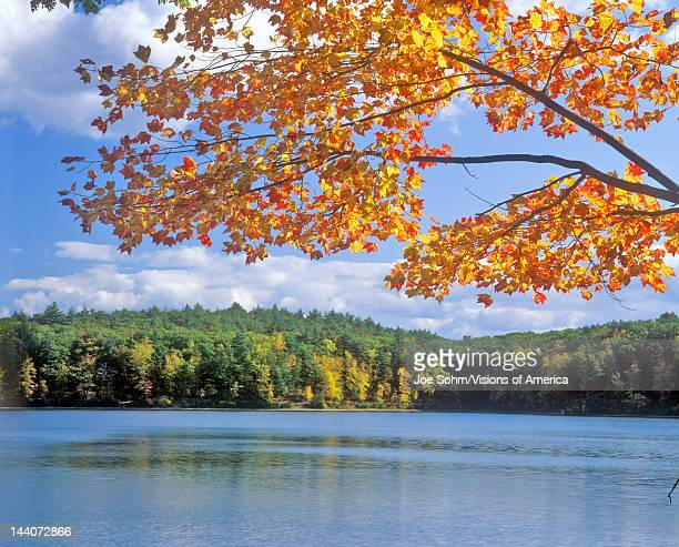 Walden Pond Massachusetts