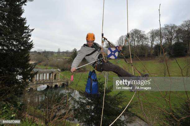 Waldo Etherington after he measured and confirmed the height of the UK's tallest Norway Maple tree at Prior Park Landscape Garden Bath at 36m the...