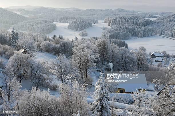 Waldviertel in winter, Austria