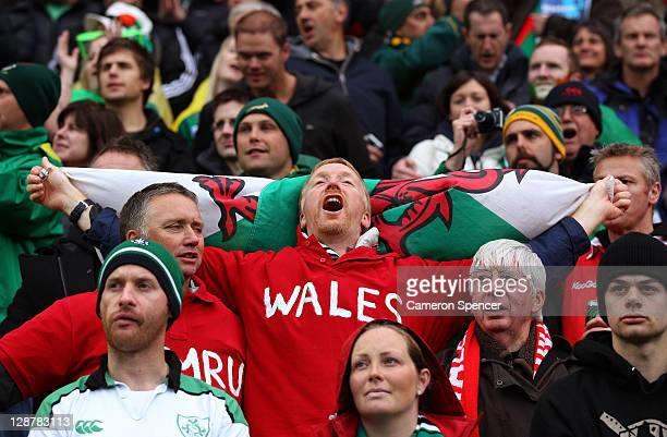 Wales fan cheers on his team during quarter final one of the 2011 IRB Rugby World Cup between Ireland v Wales at Wellington Regional Stadium on...