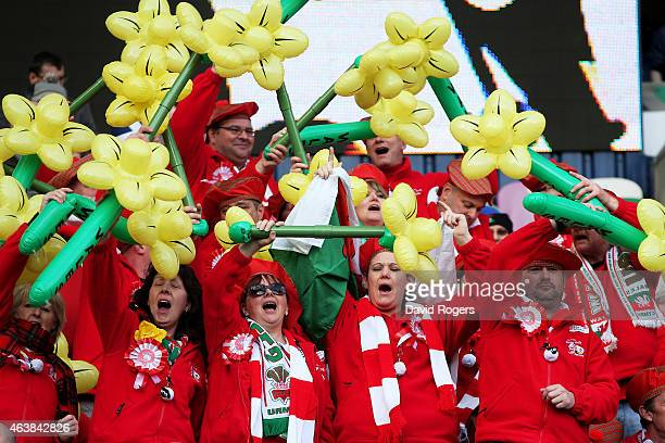 Wales fans cheer on their team during the RBS Six Nations match between Scotland and Wales at Murrayfield Stadium on February 15 2015 in Edinburgh...