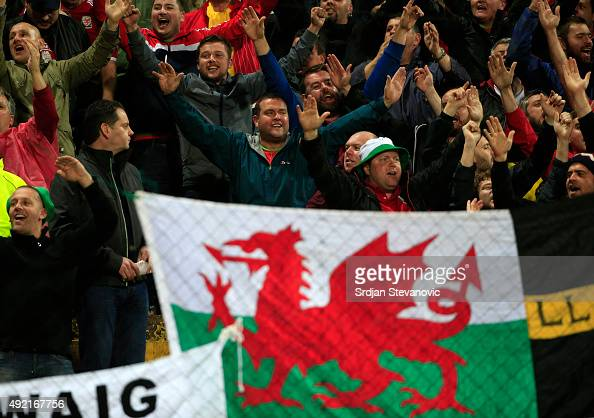Wales fans give support to their team during the Euro 2016 qualifying football match between Bosnia and Herzegovina and Wales at the Stadium Bilino...