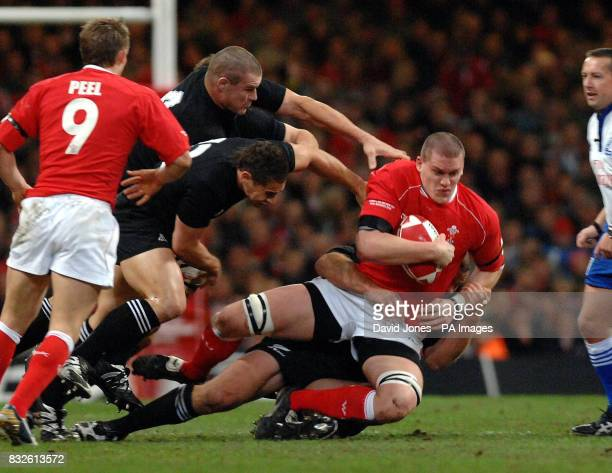Wales' Ian Evans is dumped by New Zealand's defense during the International match at Millennium Stadium Cardiff