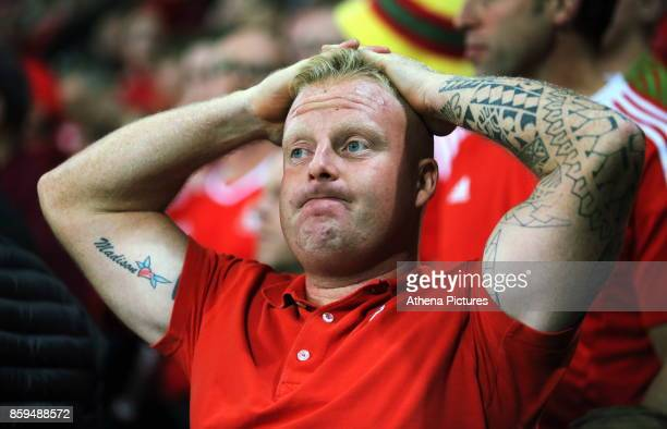 Wales supporter watches the game in disappointment after conceding a goal during the FIFA World Cup Qualifier Group D match between Wales and...