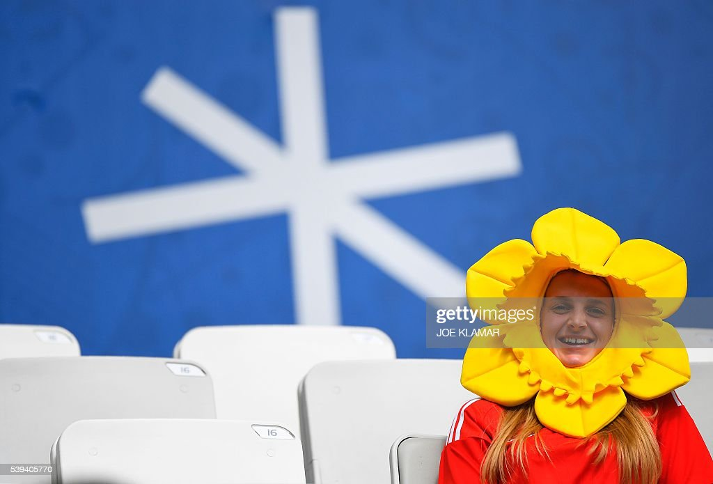 A Wales supporter wearing a daffodil hat sits in the tribunes prior to the Euro 2016 group B football match between Wales and Slovakia at the Stade...