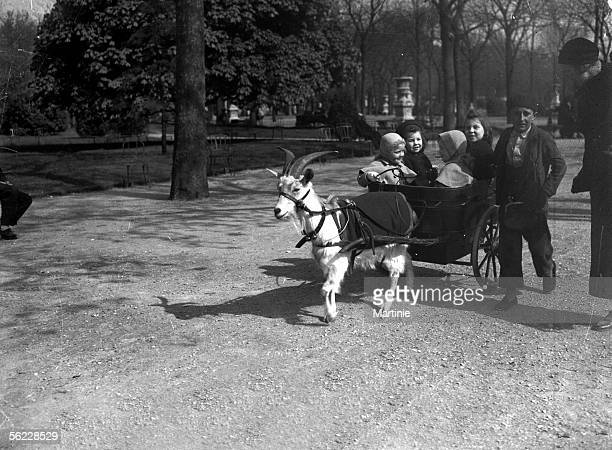 Walk in a goat drawn cart Paris on 1930's