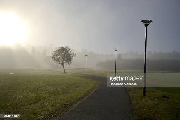 Walk in mist