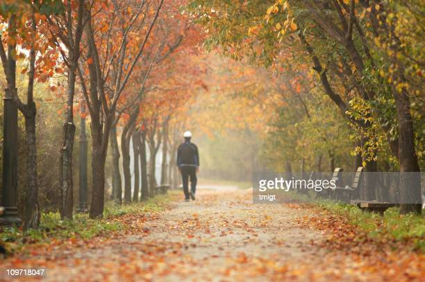 Walk on Autumn
