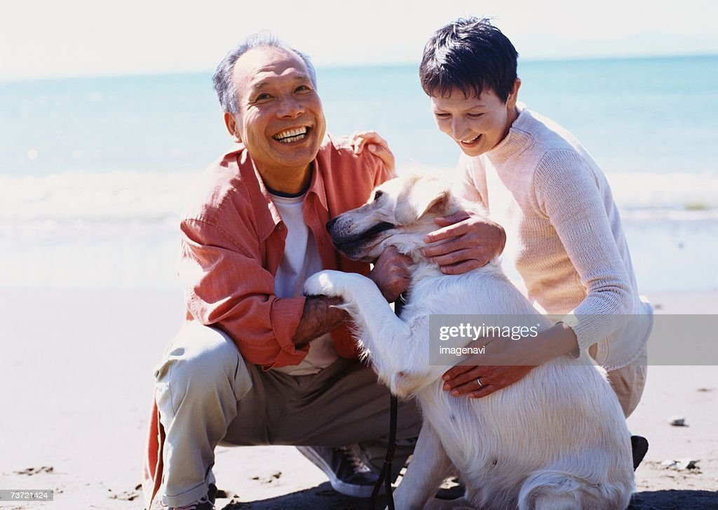 Walk with Dog : Stock Photo