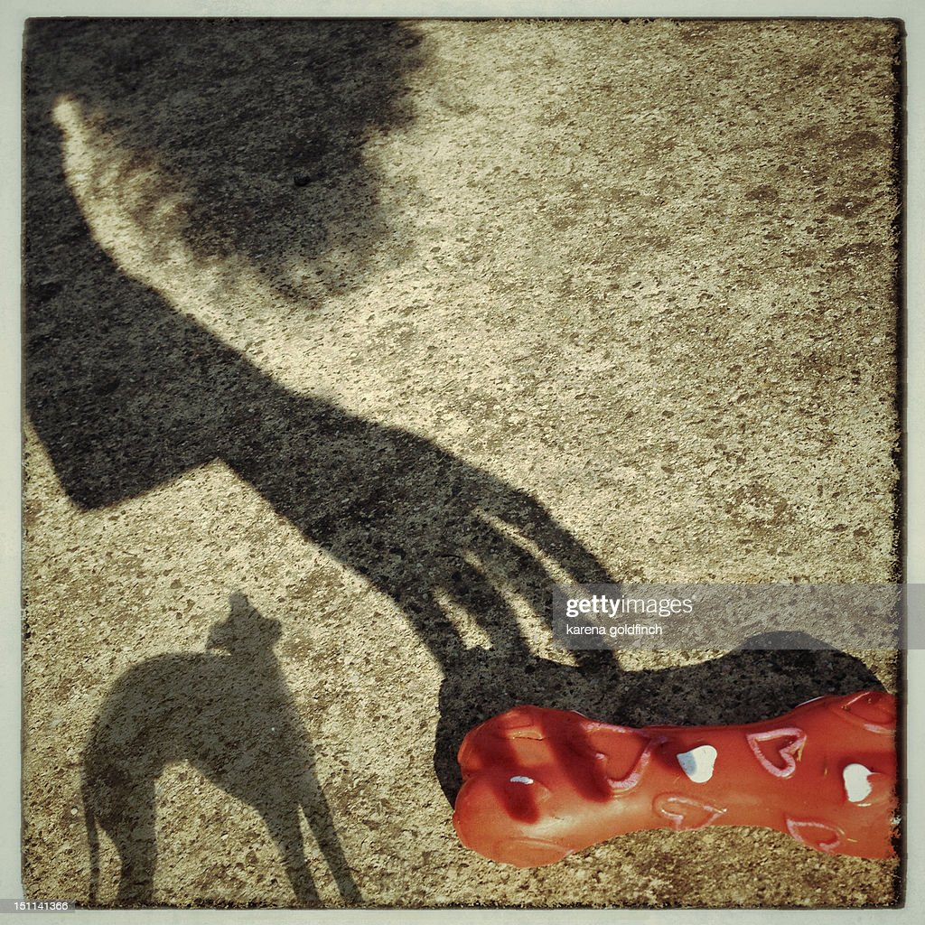 Walk with my shadow : Stock Photo