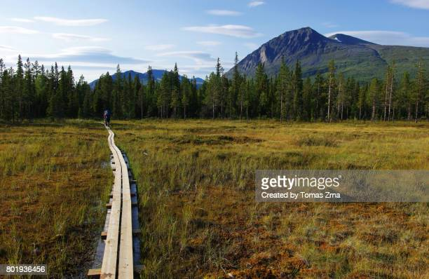 Walkboard across tundra landscape close to Njunjes