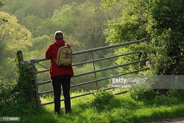 Walker at a Gate, Devon