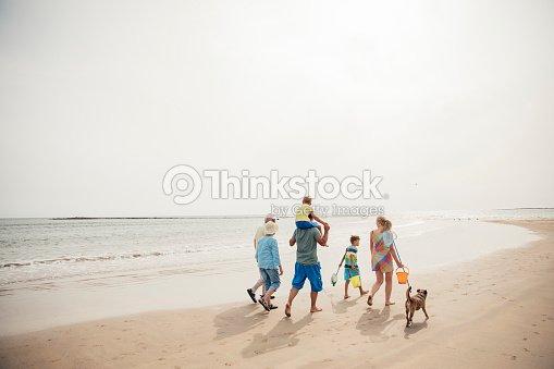 Walking Along the Beach : Stock Photo