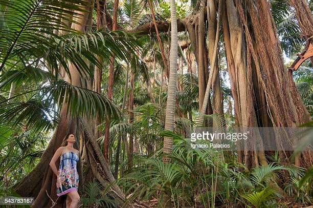 Walking among Banyan trees