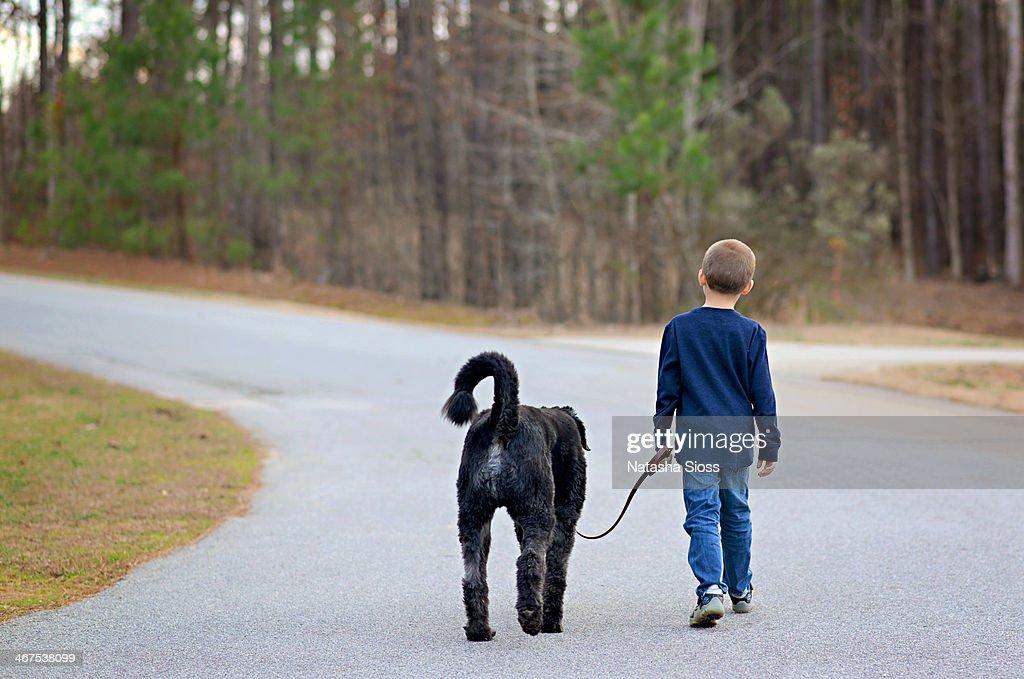 Walking his dog : Stock Photo