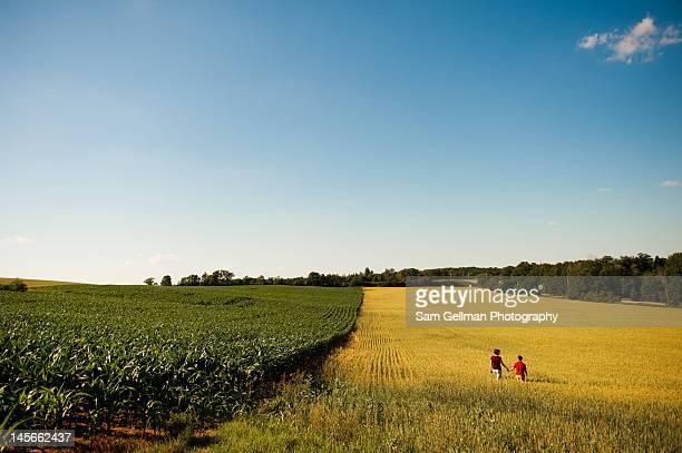 Walking in field in afternoon