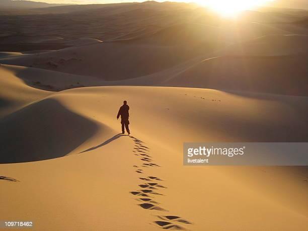 Camminare nel Gobi