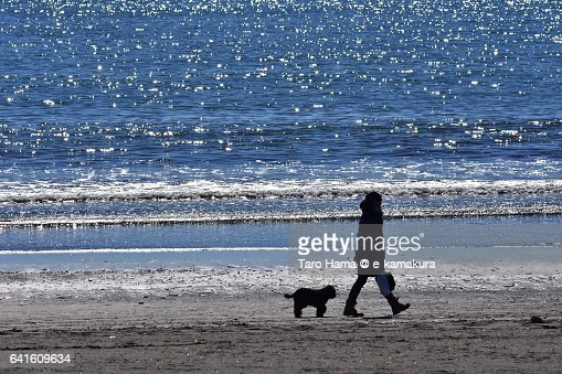 A walking lady with a dog on the sunny beach
