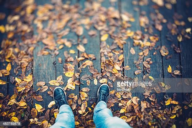 Auf Herbst Blätter