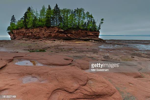Walking on the ocean floor on the Bay of Fundy