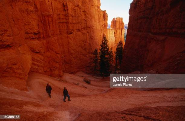 Walking the Bryce Canyon Trail.