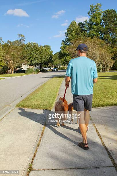 Walking the dogs in the neighborhood