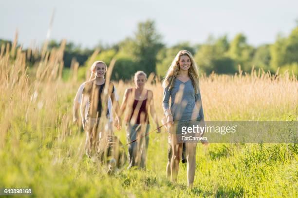 Walking Through a Grassy Field