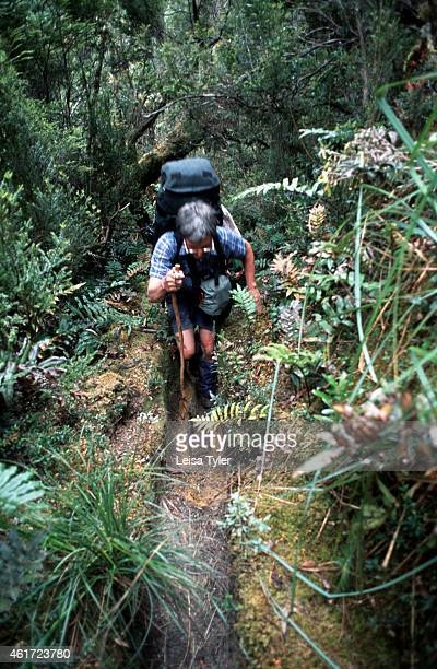 Walking through a narrow path cut into the rainforest the South Coast Track passes through several different types of vegetation Tracing the rugged...