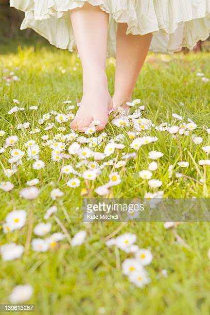 Walking through patch of daisies