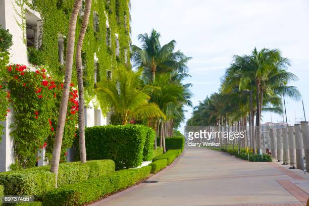 Walkway by intracoastal, Miami Beach, Florida