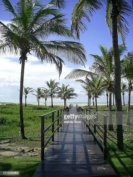 Walkways leading to sandy beach