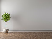 Put your creation on this empty area. Parquet on the floor, interior plant in empty room.