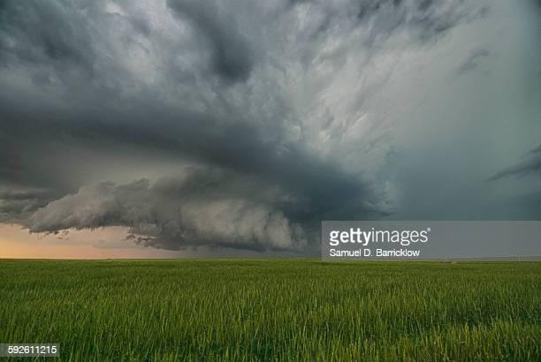 Wall cloud