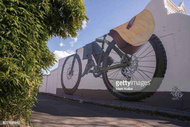 A wall mural by artist Sid Tapia is seen painted on the side of a house in a laneway in Stanmore on August 7 2017 Sydney Australia Perfect Match is...