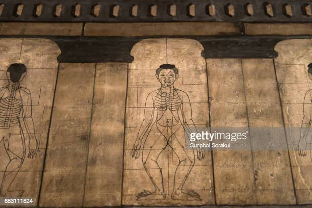 Wall painting showing human anatomy for massage and acupuncture points at Wat Pho