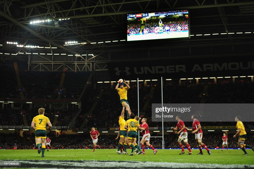 Wallabies captain <a gi-track='captionPersonalityLinkClicked' href=/galleries/search?phrase=Nathan+Sharpe&family=editorial&specificpeople=208152 ng-click='$event.stopPropagation()'>Nathan Sharpe</a> wins a lineout ball during the International match between Australia and Wales at Millennium Stadium on December 1, 2012 in Cardiff, Wales.