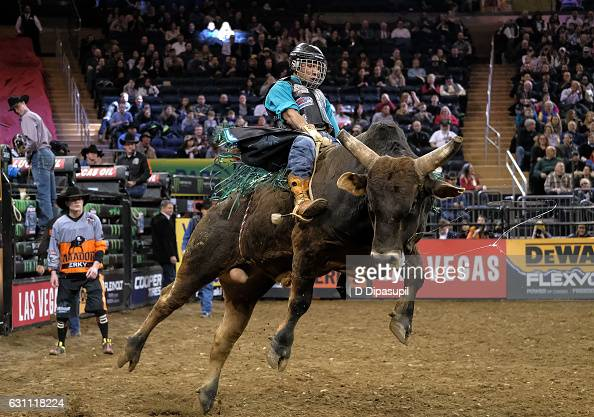 Monster Energy Buck Off Professional Bull Riders Compete At Madison Square Garden Photo Album