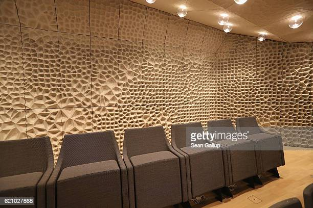 Walls designed by Yasuhisa Toyota for optimal acoustics stand behind seats in the large hall of the newlycompleted Elbphilharmonie concert hall on...