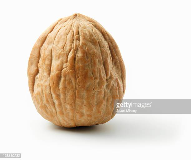 Walnut in shell on white background