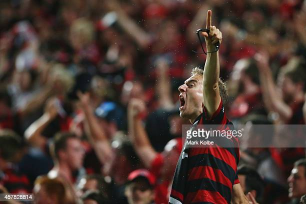 Wanderers fan celebrates after Tomi Juric of the Wanderers scored a goal during the Asian Champions League final match between the Western Sydney...