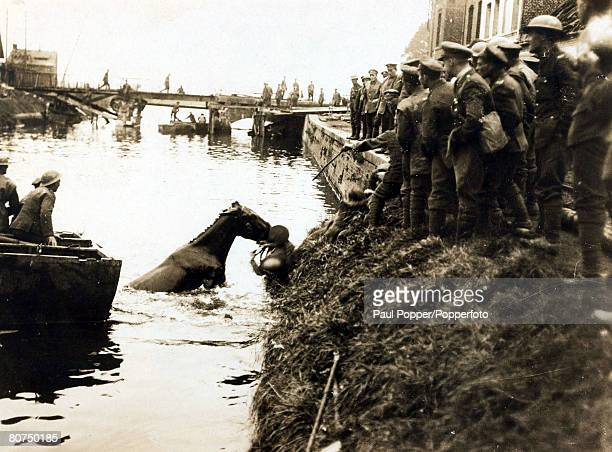 War and Conflict World War I 19141918 France A mule is dragged by troops from the river as the advance is continued despite the Germans blowing up...